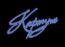 печати, штампы, факсимиле, пломбираторы, пломбиры, пломбы, визитки, оснастка для печатей и штампов, в химках и куркино, 89257343892, картуш